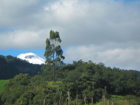 First glimpse of Cotopaxi volcano, where we were heading.