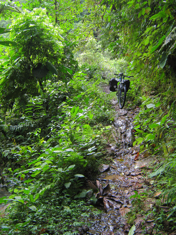 The descent from Banos to Puyo is a very easy and stunning bike ride from mountain peaks through cloud forest to deep rain forest.
