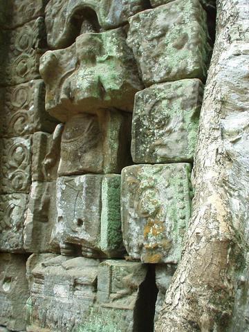 Disintegrating statue, Ta Prohm, Angkor.