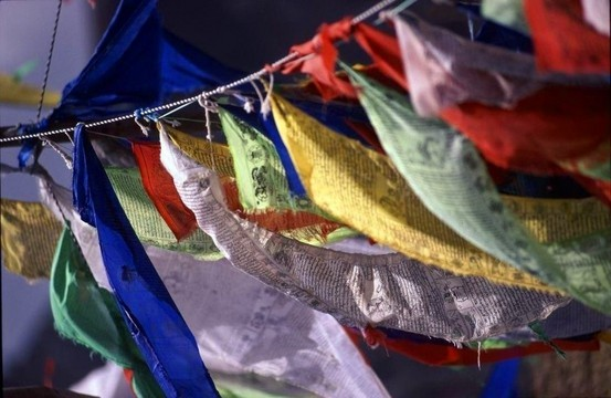 Tibetan flags on a hillside.
