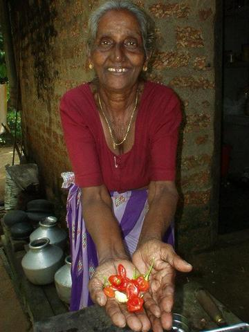 Keralan village woman showing chili peppers.