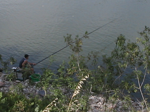 Man fishing in the Loire.  They all just use these long poles, no reel.