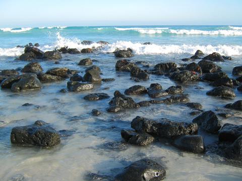Tortuga Bay Beach, near Puerto Ayora on Santa Cruz island.