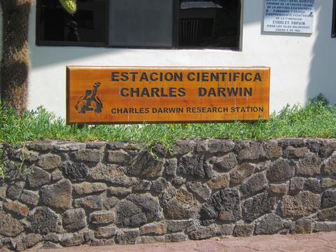 Charles Darwin research center, Puerto Ayora.