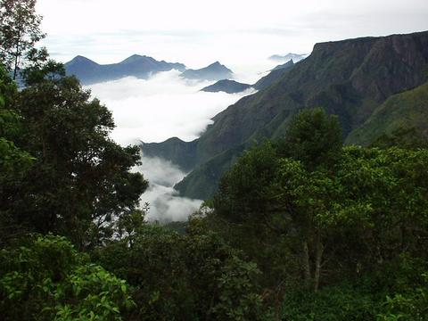 Fog spilling over into the valley as seen from Pillar Rock, Kodaikanal.