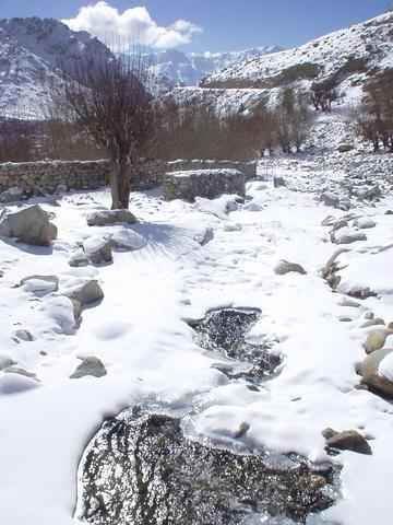 Stream in the valley below the Likir Gompa, Ladakh.