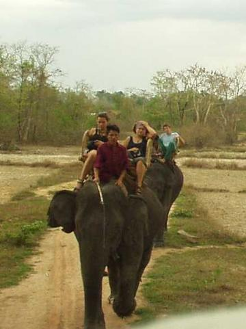 Riding Elephants, Kiet Ngong, Champasak Province.