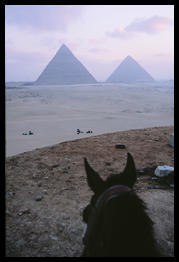pyramids_and_horse