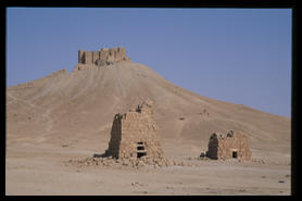 the_palmyra_castle